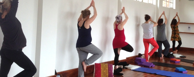 Row of pregnant women in tree pose